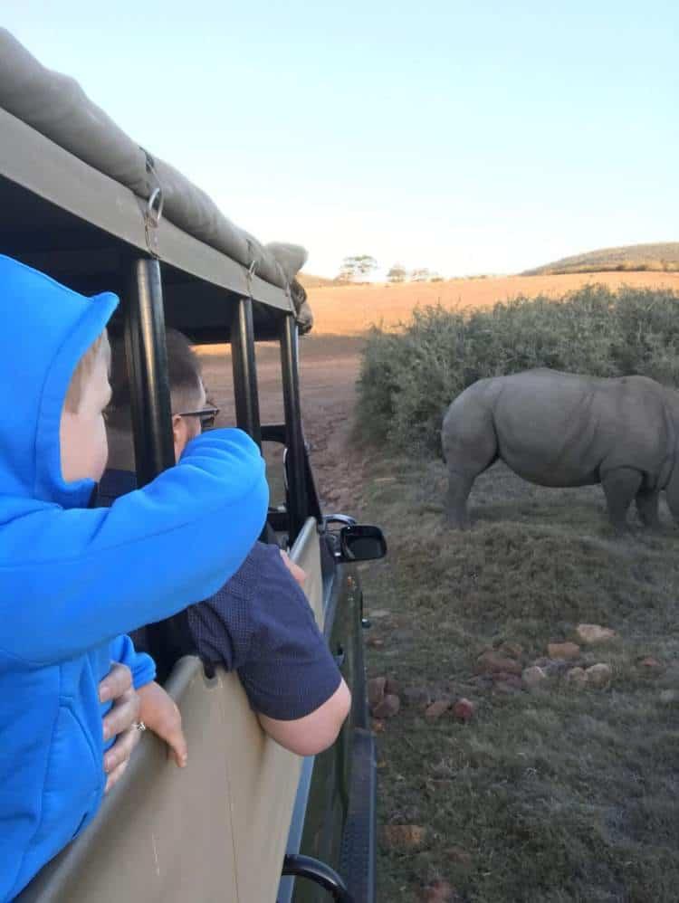 Boy pointing to Rhino on Safari