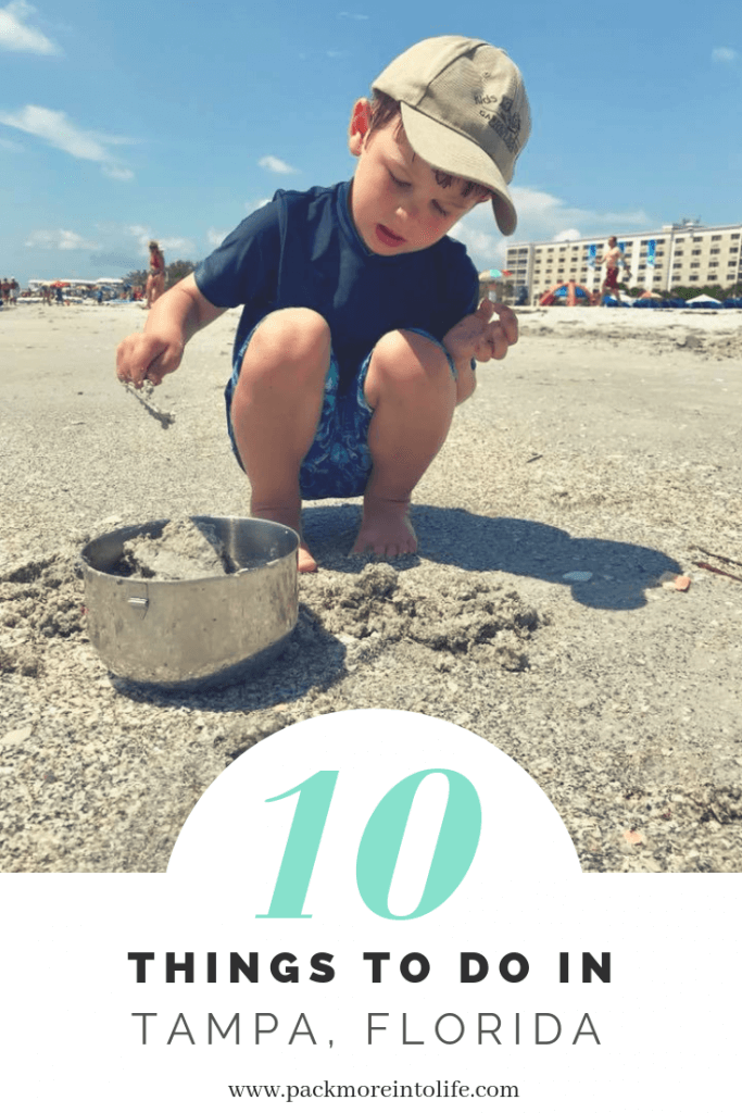Top 10 Things to Do with Kids in Tampa, Florida