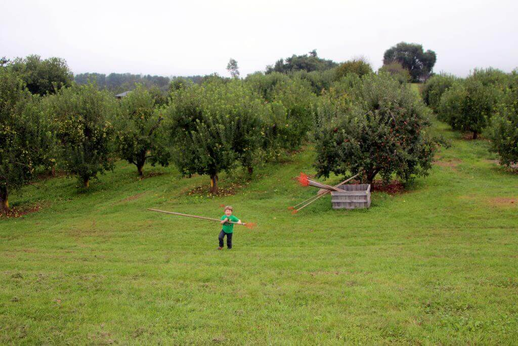 Stribling Orchard