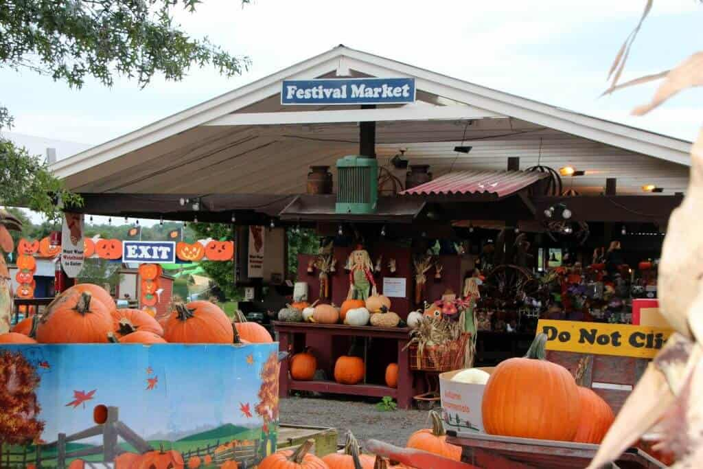 Cox Farms Festival Market