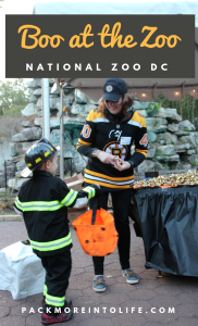 """Boo at the Zoo"" at the National Zoo in DC"