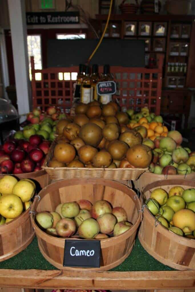 Great Country Farms Bluemont, Virginia apple picking