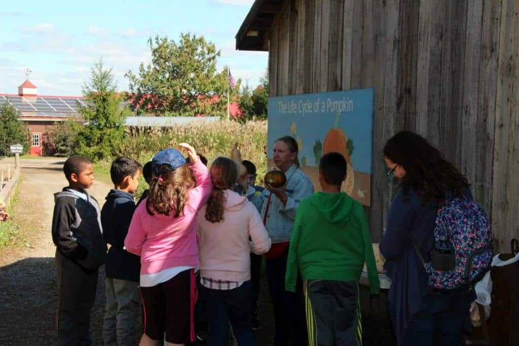 Great Country Farms Bluemont, Virginia educational programs