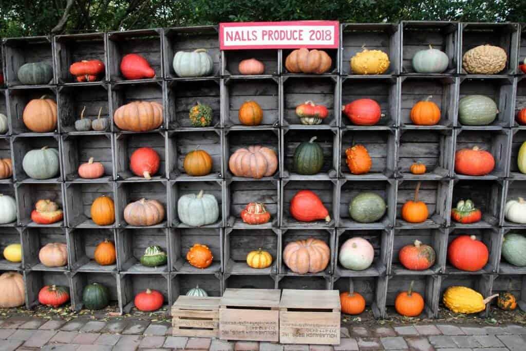 Nalls Produce pumpkin display