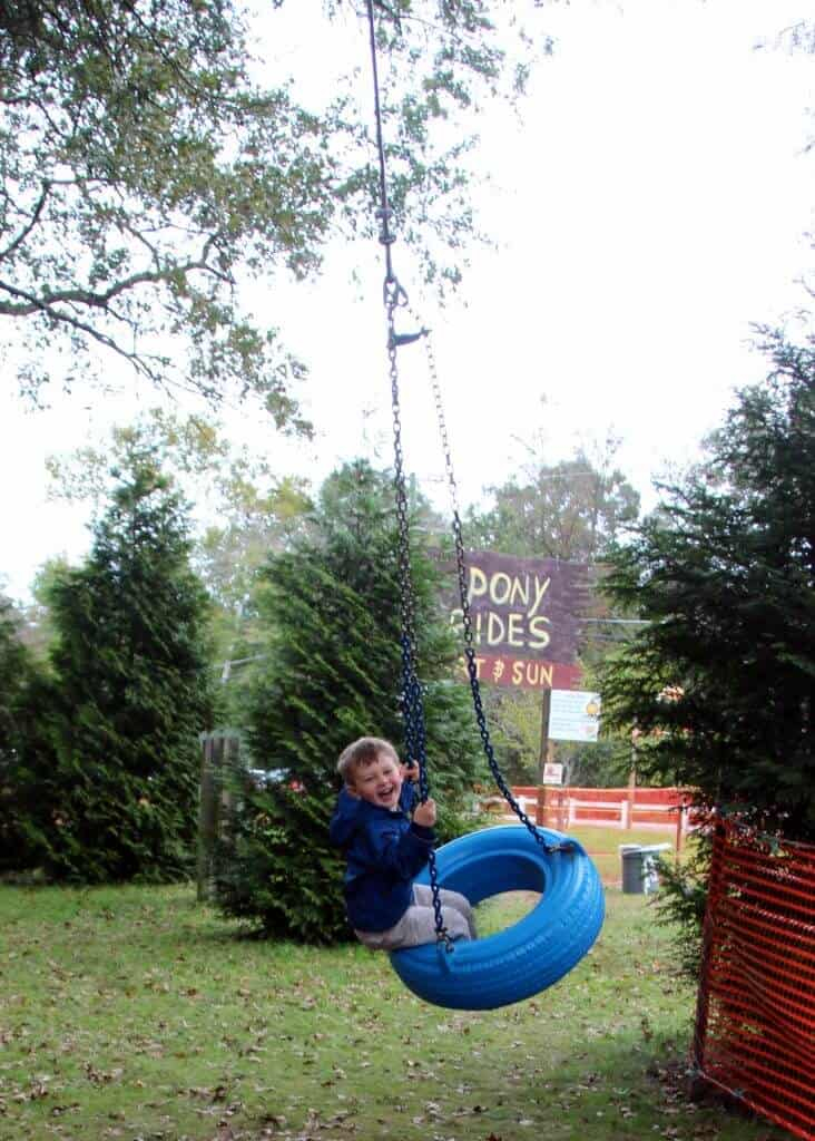 Burke Nursery Pumpkin Playground Tire swing